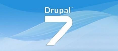 Drupal 7 – Une vulnérabilité critique sème la panique chez les administrateurs | Brèves de scoop | Scoop.it