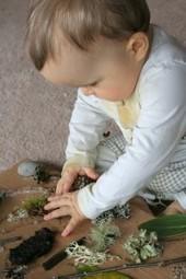 Forests: Fun Friday feature   Teach Preschool   Teach Preschool   Scoop.it