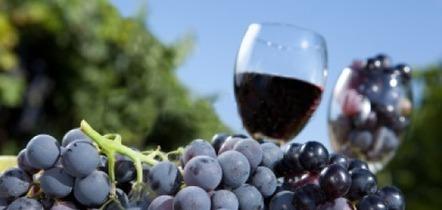 La capsule à vis pour les vins de garde! - Vin Québec | oenologie en pays viennois | Scoop.it