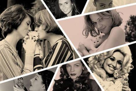 The 50 Most Fabulous (and Famous) Cat Ladies of All Time | Breeds of Cats | Scoop.it