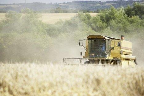 Cinq pesticides classés cancérogènes «probables» ou «possibles» | Chronique d'un pays où il ne se passe rien... ou presque ! | Scoop.it