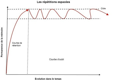 Comment tout mémoriser rapidement avec les répétitions espacées | Education-andrah | Scoop.it