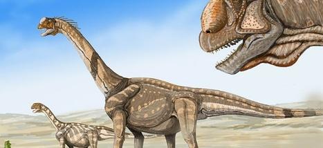 S'il n'y avait pas eu la météorite, les dinosaures seraient-ils toujours là?   Veille internet   Scoop.it