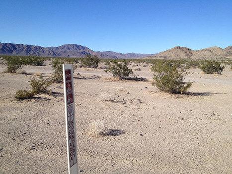 Soda Mountains Solar Project | GarryRogers Biosphere News | Scoop.it