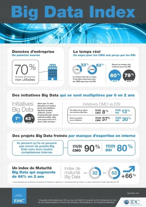 Big Data : où en sont les CMO? | Etude & infographie | Scoop.it