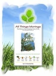 FREE! Moringa Webinar | Moringa - Health and Nutrition | Scoop.it