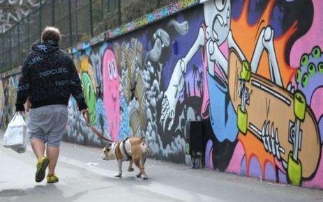 A Belleville, le graff devient un atout touristique - Le Parisien | Paris pendant les vacances scolaires. | Scoop.it