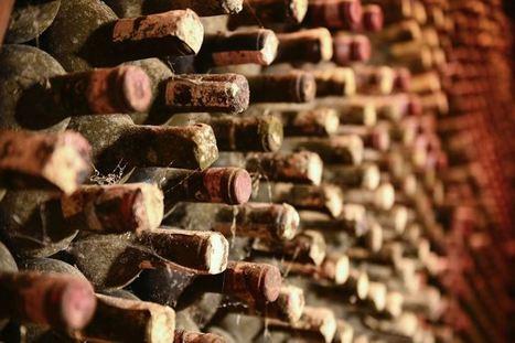 Investir dans le vin : deux nouveaux produits passés au crible | Vin 2.0 | Scoop.it