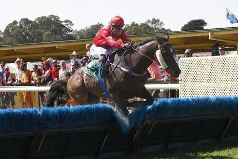 2016 South Australian Jumps Racing Programme and Results | Adelaide Scenes | Scoop.it