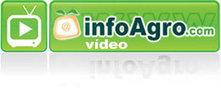 Vídeo Manual del cultivo del melón. 1ª parte. Cucumis melo L. | buenas practicas agrícolas | Scoop.it