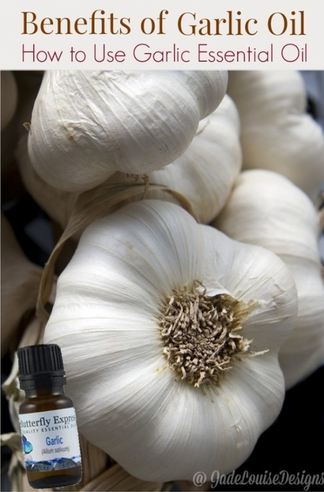 The numerous Benefits of Garlic Oil and how to use Garlic Essential Oil | FOOD? HEALTH? DISEASE? NATURAL CURES??? | Scoop.it