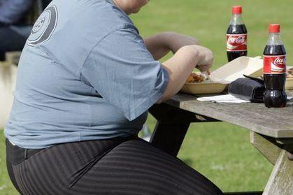 Obésité : un anticorps trouble la régulation de l'appétit | hamburger | Scoop.it