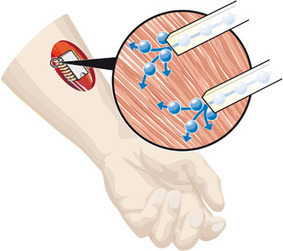 Integrated Chemical Chip Could Control Muscle Movement | shubush design & wellbeing | Scoop.it