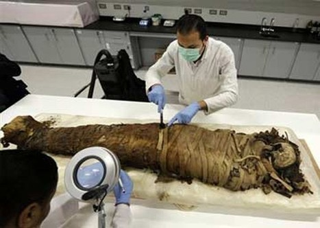New mummies discovered floating in sewage in Upper Egypt - Daily News Egypt | Egyptology and Archaeology | Scoop.it