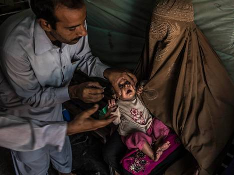 The end of polio by 2018 – unless the funding dries up | BIOSCIENCE NEWS | Scoop.it