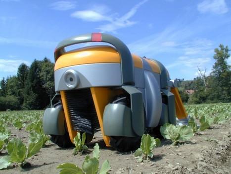 Weedmaster, le robot anti mauvaises herbes! | Best of Robots - Le Blog ! | Robolution Capital | Scoop.it