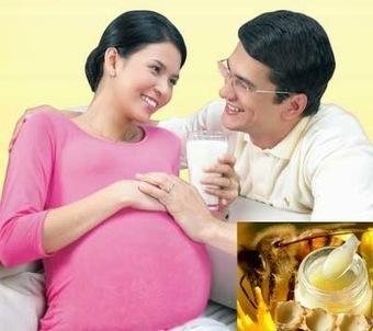 Hướng dẫn cách sử dụng sữa ong chúa tươi hiệu quả « Sữa ong chúa tươi nguyên chất trực tiếp tại cơ sở nuôi ong | gameavatar | Scoop.it