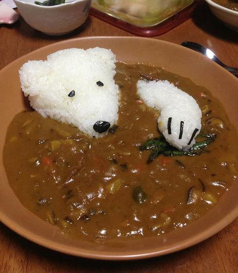 Le petit ours blanc | Trollface , meme et humour 2.0 | Scoop.it