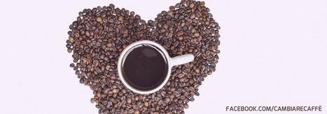 Li Conosci i 9 Benefici del Caffè? | Organo Gold - Distributore Indipendente | Scoop.it
