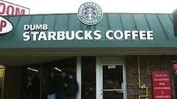 MediaReportsLatestNews: 'Dumb' Starbucks owner revealed to be comedy personality | 10 latest news | Scoop.it