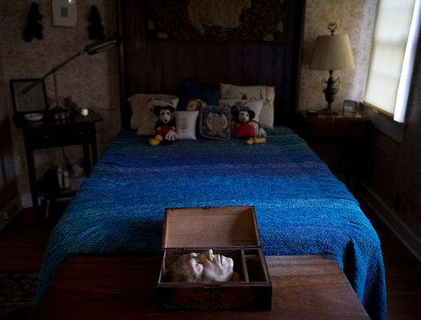 Sendak's Estate: Debating Where the Things Go - New York Times | shoespie | Scoop.it