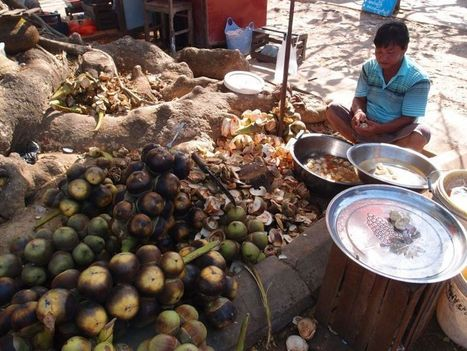 A toddy trip through Myanmar | Other Asia travel stuff | Scoop.it
