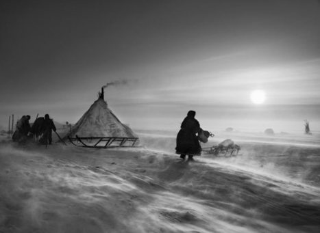Sebastião Salgado: Genesis – review | The Gaze | Scoop.it