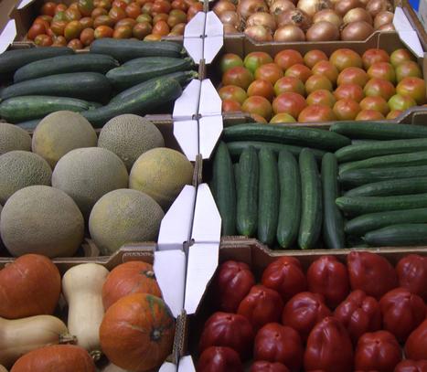 España, octavo en el ranking mundial de exportaciones agroalimentarias y cuarto de la UE | Agrobrokercommunitymanager | Scoop.it