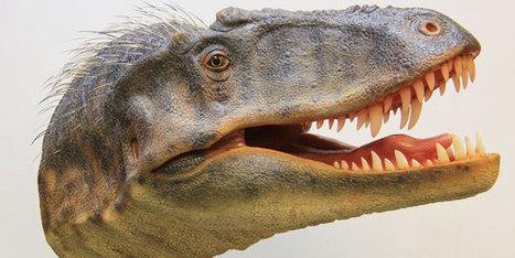 Nieuw familielid van Tyrannosaurus rex ontdekt in Utah - Scientias.nl   KAP-HosteL   Scoop.it