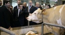 Exclue Plume des Champs: Nicolas Sarkozy dialogue en direct avec les agriculteurs - Le Figaro   Le Fil @gricole   Scoop.it