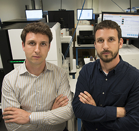 Comprehensive drug-gene database that matches thousands of disease genes with approved or experimental drugs | Amazing Science | Scoop.it