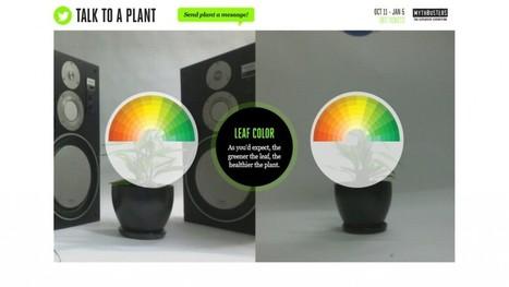 Twitter permet à une plante de mieux pousser : Talk to a plant | Marketing Stories | Stratégies et actions marketing à l'international | Scoop.it