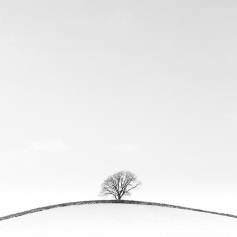 Talk for the Royal Photographic Society   Doug Chinnery Photography   Photography   Scoop.it