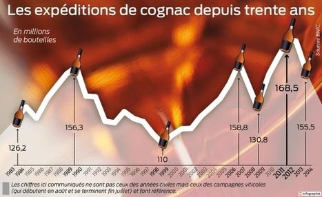 Pour le cognac, la courbe des expéditions se redresse enfin   Le Cognac et son vignoble   Scoop.it