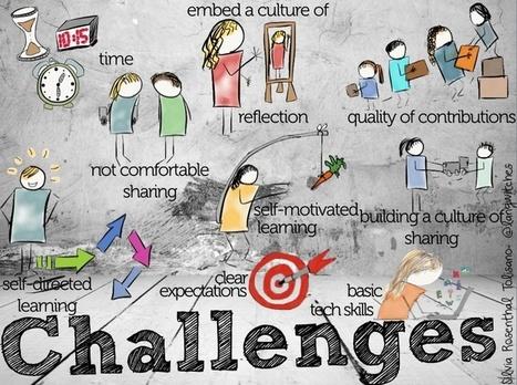 Building a Professional Development Hub for your School- Part 3- Challenges | Zentrum für multimediales Lehren und Lernen (LLZ) | Scoop.it