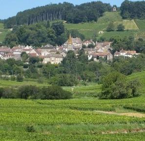 Demand puts pressure on Burgundy 2010 | Vitabella Wine Daily Gossip | Scoop.it