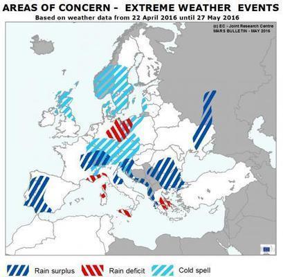 Fairly good EU crops outlook despite unsettled weather  - EU Science Hub - European Commission | Nostri Orbis | Scoop.it