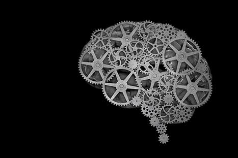 Lifetime of Reading Slows Cognitive Decline - | Librarysoul | Scoop.it