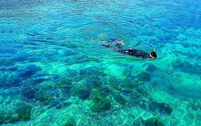 Snorkeling in Dubai | Diving in Dubai at Ask Explorer | Dubai | Scoop.it