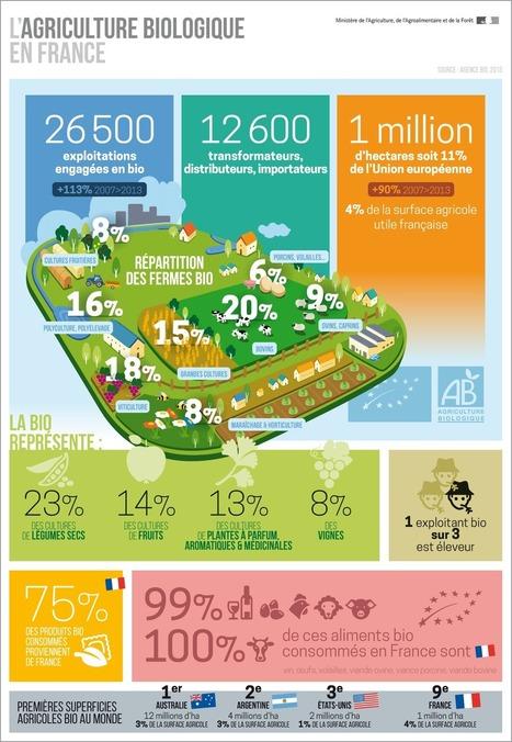 Infographie : Chiffres de l'AB en France | Agriculture biologique | Scoop.it