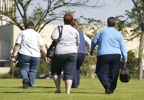 L'obésité pèse lourd sur la biomasse de l'humanité adulte | lycées hôteliers | Scoop.it