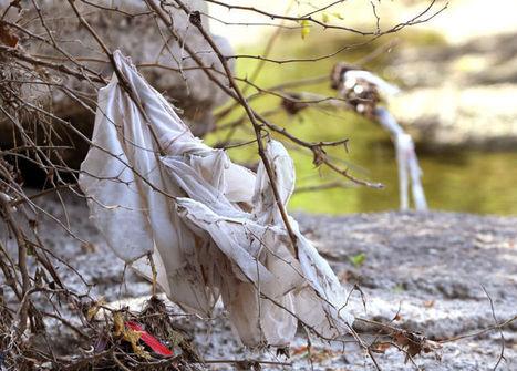 Grass-roots group wants to improve Nolan Creek - Killeen Daily Herald | Fish Habitat | Scoop.it
