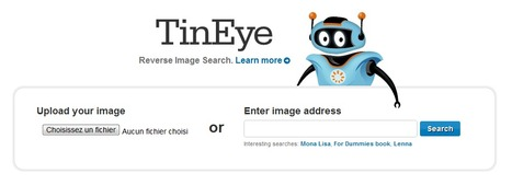 TinEye Reverse Image Search | Time to Learn | Scoop.it