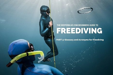 (EN) - Glossary and Acronyms of Freediving | Emma Farrell | Glossarissimo! | Scoop.it