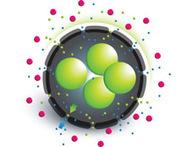 Nano-encapsulation for islets | Diabetes articles | Scoop.it