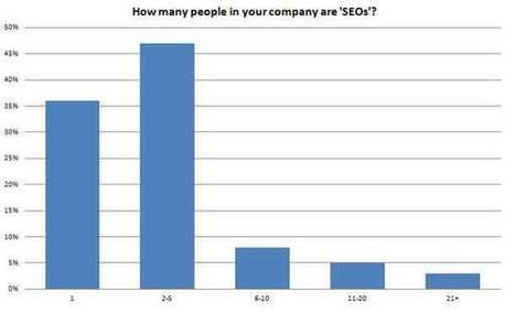 BrightLocal Local SEO Industry Survey 2013 | Digital Marketer Watch | Scoop.it