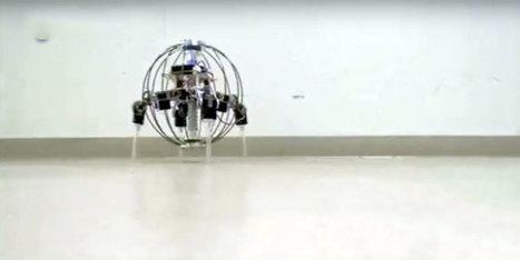 Une fois projeté, ce robot roule et déploie ses pattes pour marcher - H+ Magazine   Ressources pour la Technologie au College   Scoop.it