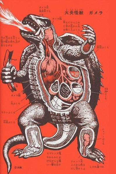Kaiju anatomical drawings ~ Pink Tentacle | Movies | Scoop.it