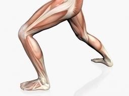 CESFAM Machalí da consejos para evitar lesiones musculares en la ... - El Rancahuaso   Enfermería Comunitaria   Scoop.it