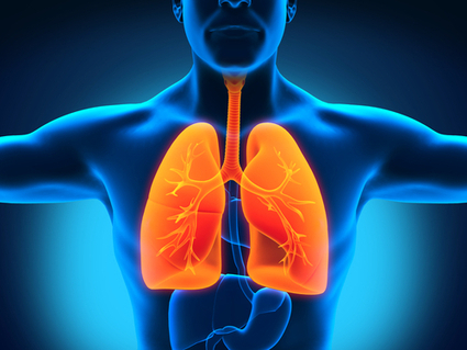 New Hope For COPD Sufferers In Lung Regeneration - BioNews Texas | Biotechnology | Scoop.it